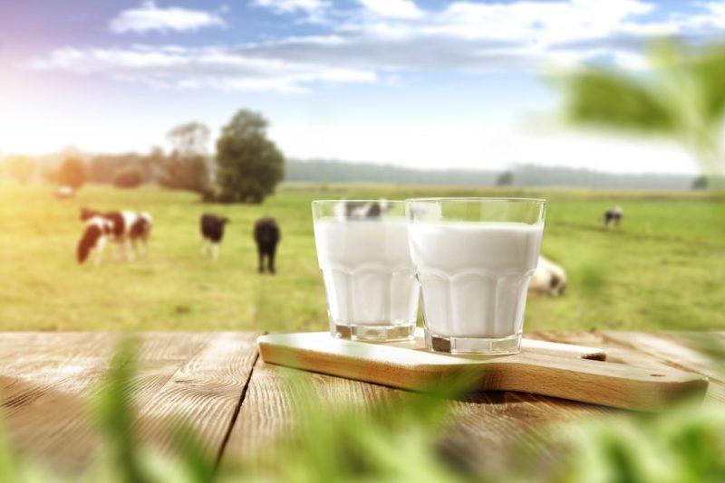 Молоко при грудном вскармливании : можно ли пить